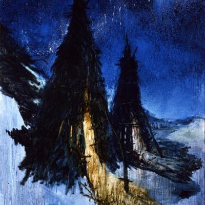 Francesco De Grandi, Capanni, 2008, Oil On Canvas, 300x200 Cm