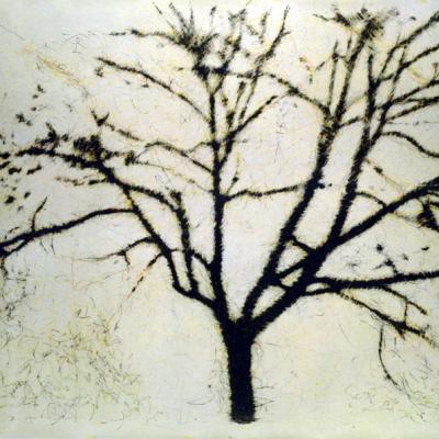 Fuori Registro (albero), 1995, Grafite Su Carta Su Tela, 190x270 Cm