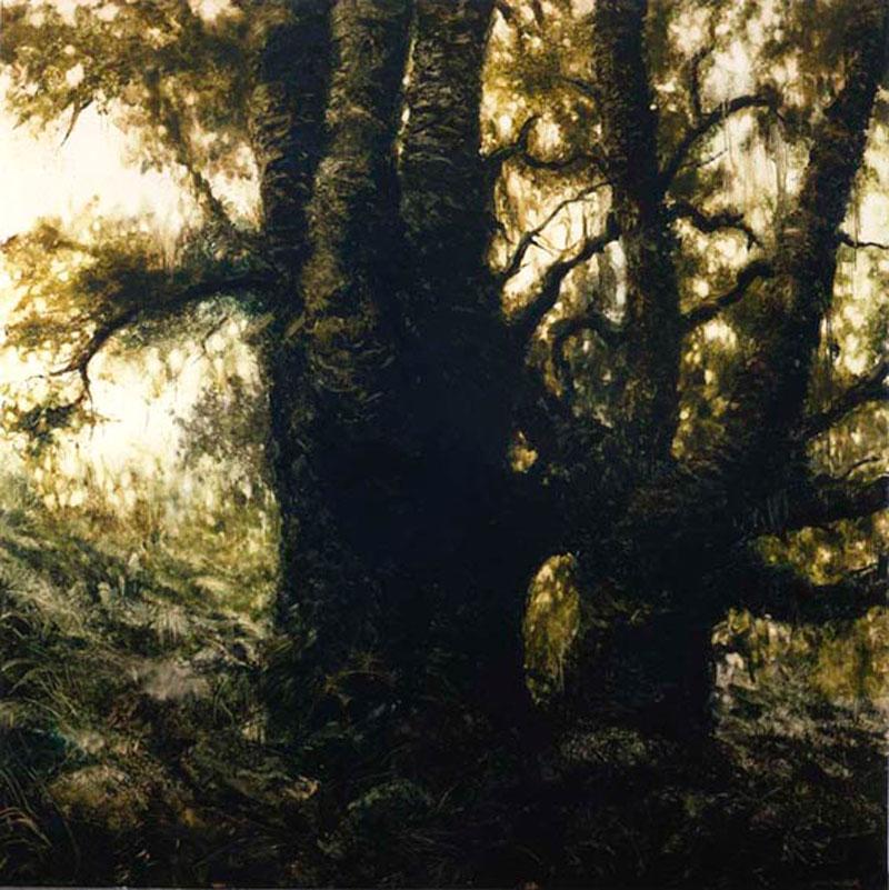 Francesco De Grandi, Senza titolo1, 2008, oil on canvas, 300x300 cm